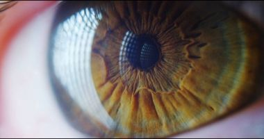 perfect green eye macro in a sterile environment and perfect vision in resolution
