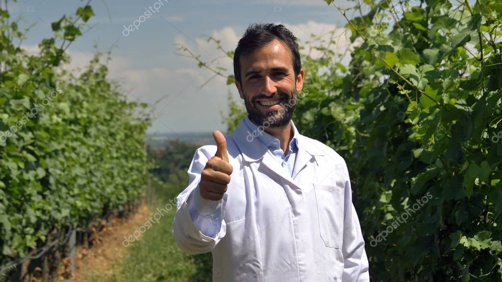 A portrait of a specialist in plants, relaxes in the camera, checks the grape fields, the background of greenery. Concept: ecology, wine, bio product, inspection, water, natural products, professional