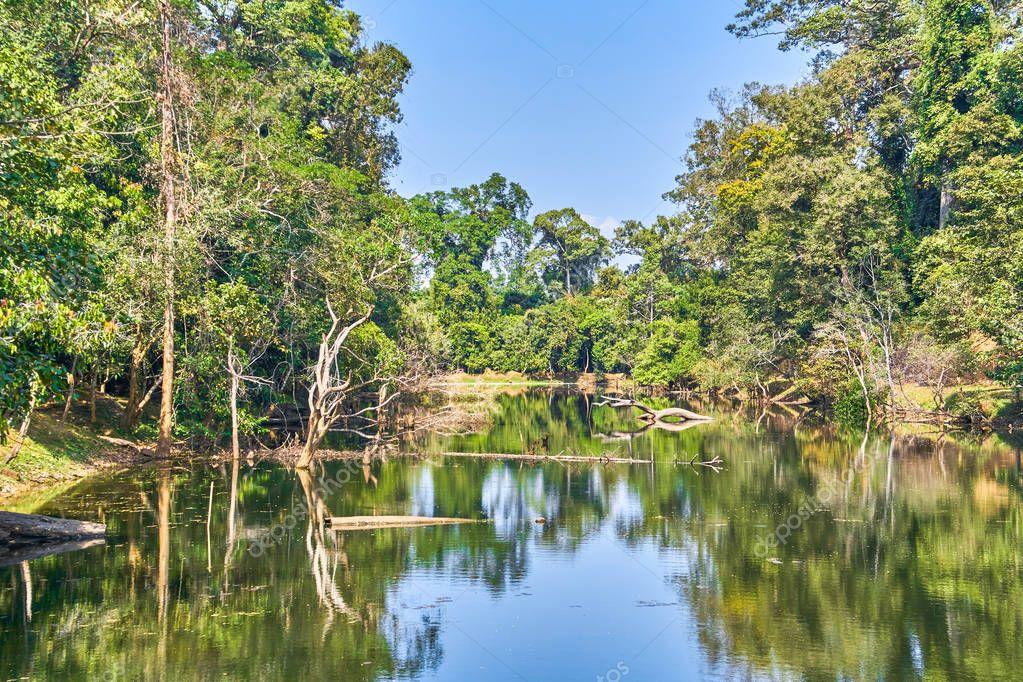 Moat near Preah Khan temple, Angkor, Cambodia