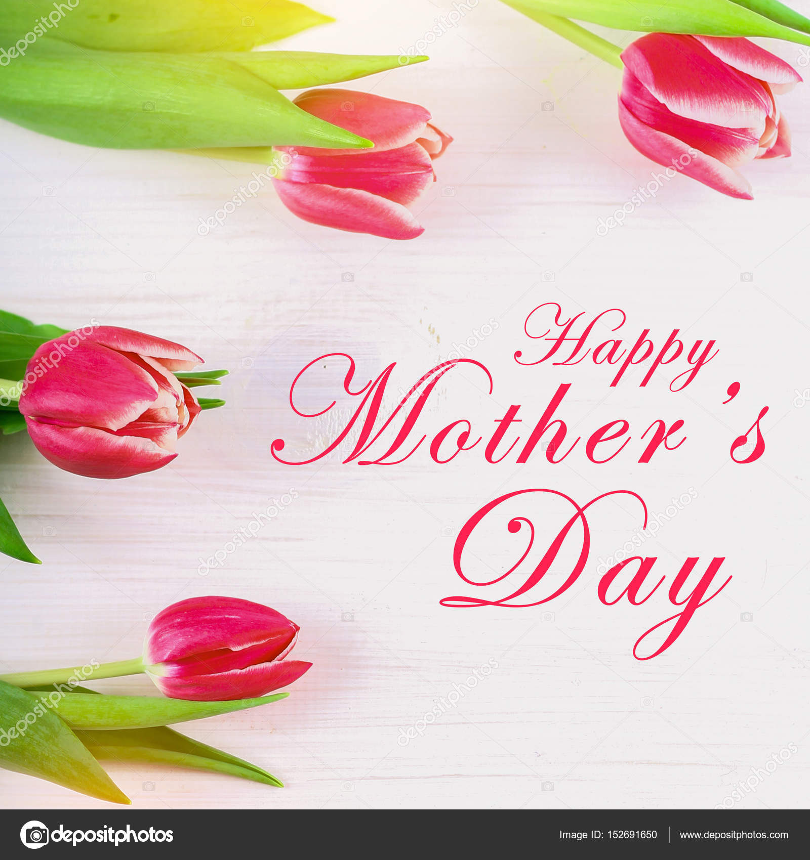 Happy mothers day text sign on pink tulips on white rustic wooden happy mothers day text sign on pink tulips on white rustic wooden background greeting card kristyandbryce Choice Image