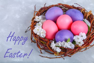 Pink and purple easter eggs in a nest with white flowers on a gray concrete background.