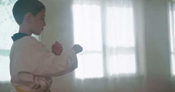 Lassított felvétel, egy fiatal fiú, gyakorló harcművészetek