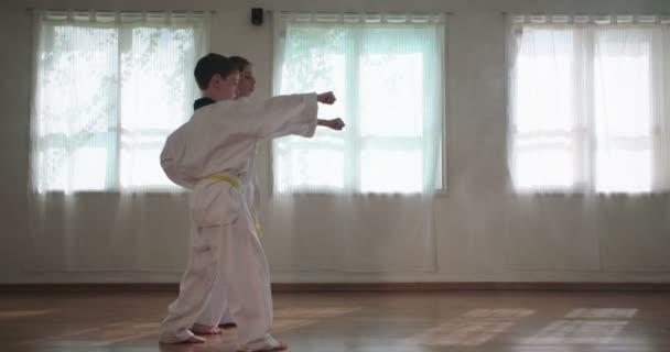 Lassú mozgás hosszúság-ból fiatal gyerekek gyakorló harcművészetek