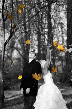 Wedding couple at autumn park.Married couple in the wedding day