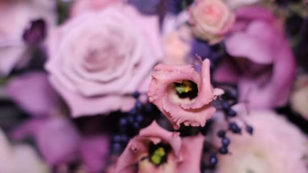 složení barev růží stojí