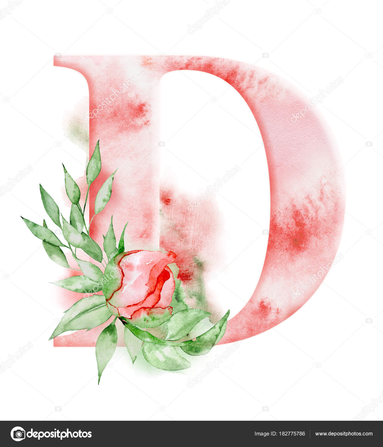 Floral Watercolor Alphabet  Monogram Initial Letter D