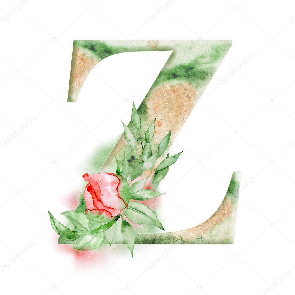 Floral watercolor alphabet. Monogram initial letter Z design with hand drawn peony flower