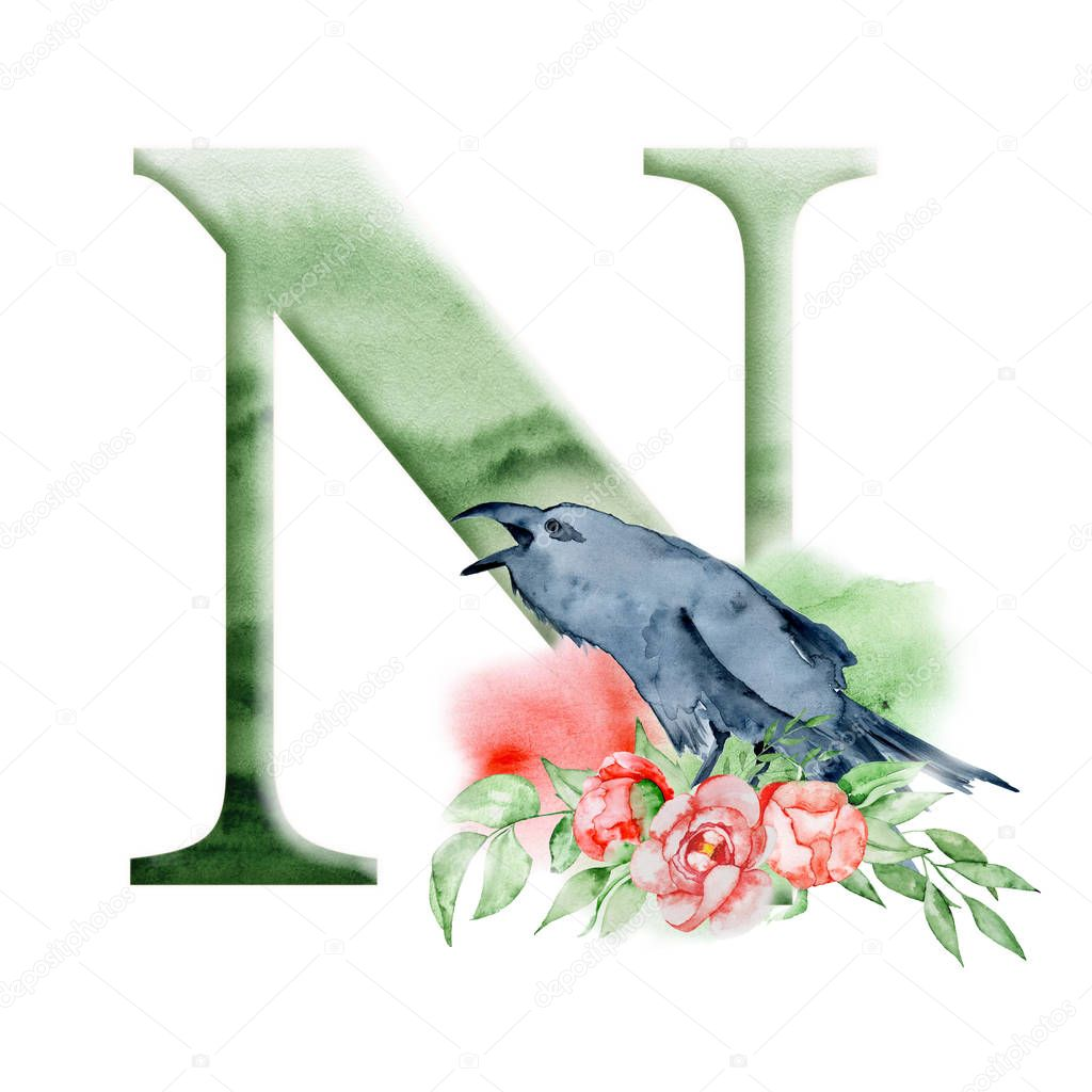 Floral watercolor alphabet. Monogram initial letter N design with hand drawn Raven, crow and flower peonies bouquet