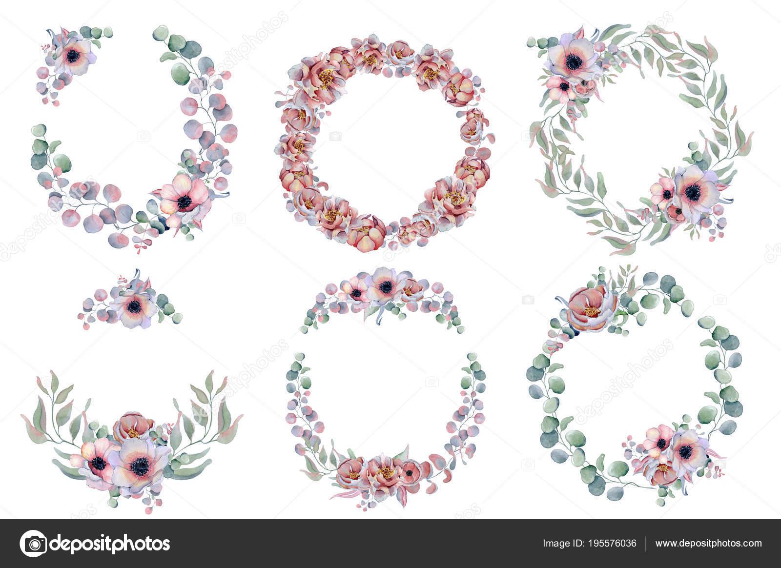 cuadros de acuarela coronas engastados anémona, hierbas y flores de ...