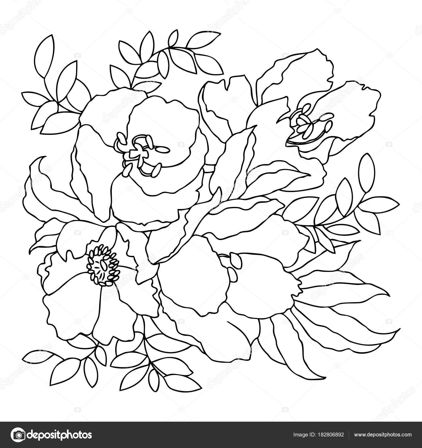 Dibujo lineal a mano. Imagen vectorial blanco y negro. Plantilla ...