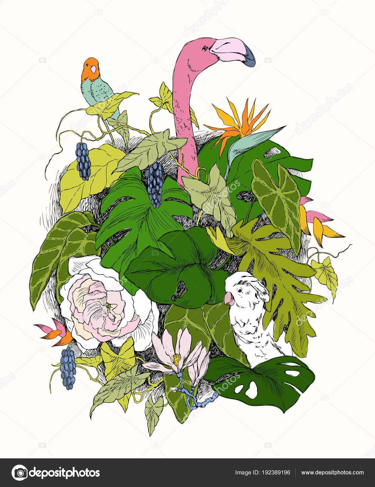 Handgezeichnete Zweige Und Blätter Von Tropischen Pflanzen