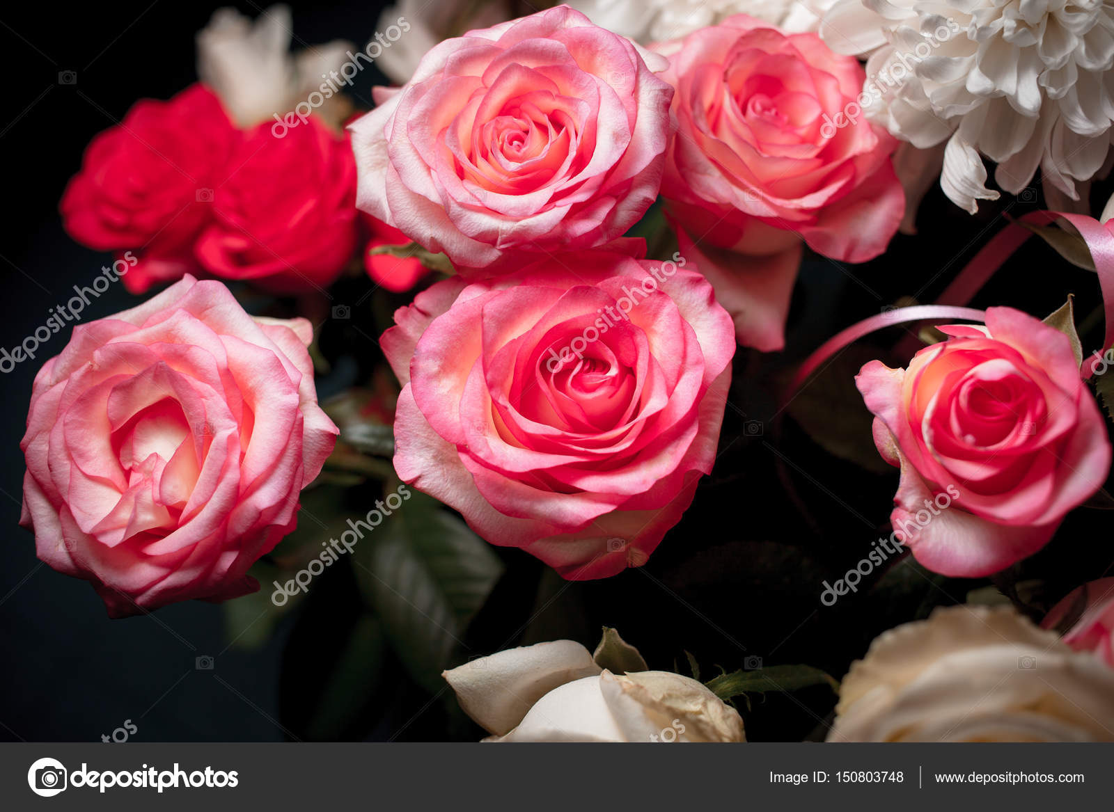 Still Life Of Rose Bouquet Flower Beautiful Fresh Pink Roses Rose