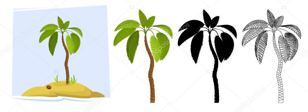 Tropical palm trees. Illustration of a palm tree, black silhouettes and outline contours isolated on white background. Vector