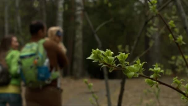 Mladá rodina s dítětem na cestě v lese