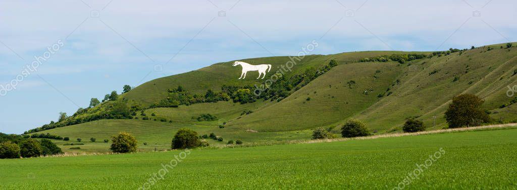 Panorama of Westbury White Horse