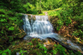Wasserfall im Wald, sommerlicher Outdoor-Background