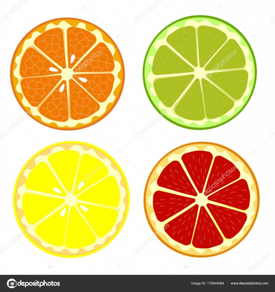 Set di arancio frutta limone lime pompelmo raccolta di for Clipart frutta