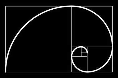 Golden ratio.Template for the construction of a helix. Constructing a composition, an ideal proportion of the proportion. Template design. Scalable vector illustration of spiral with golden ratio