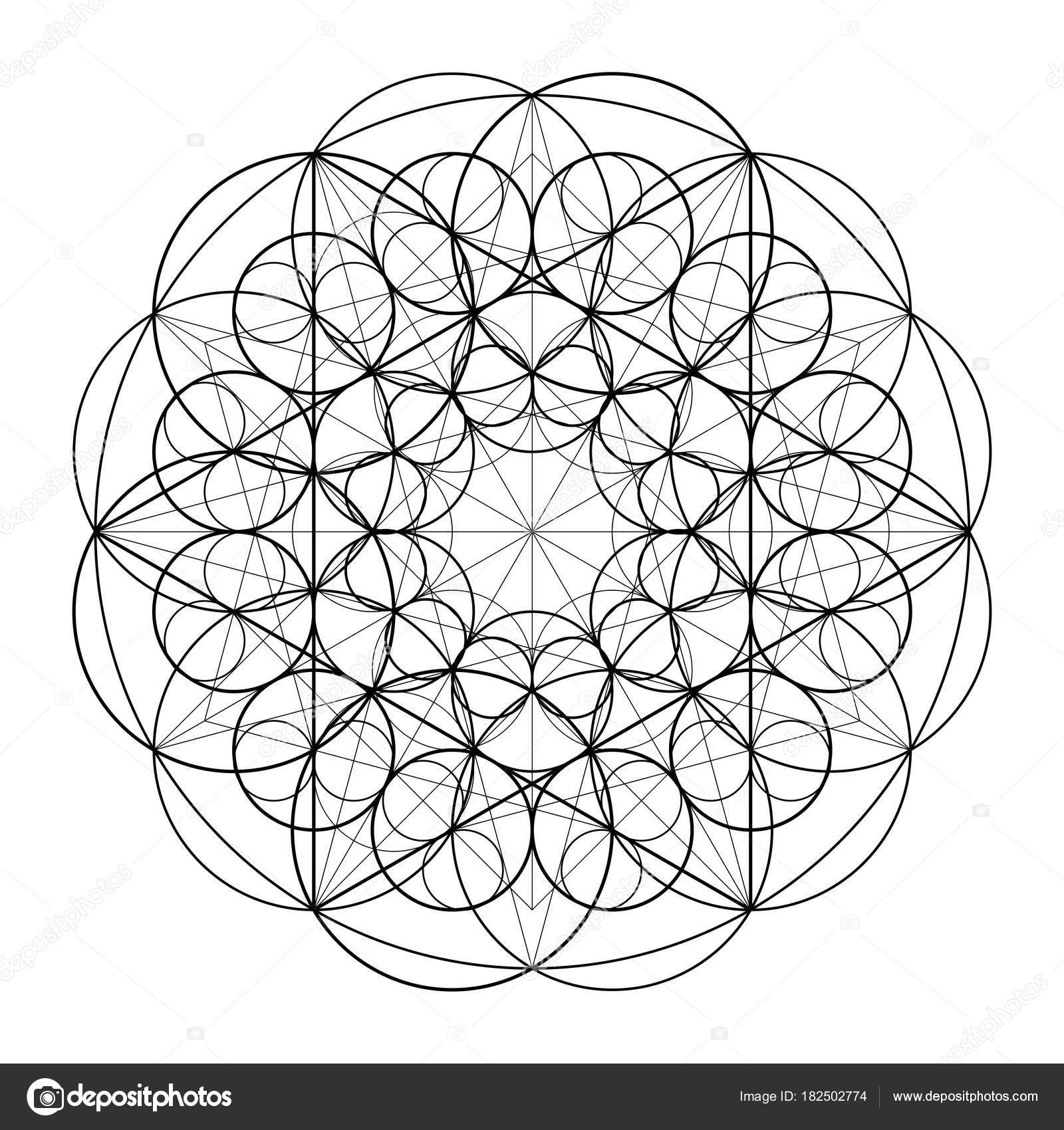 ornament from circles geometric pattern based on the repetition of