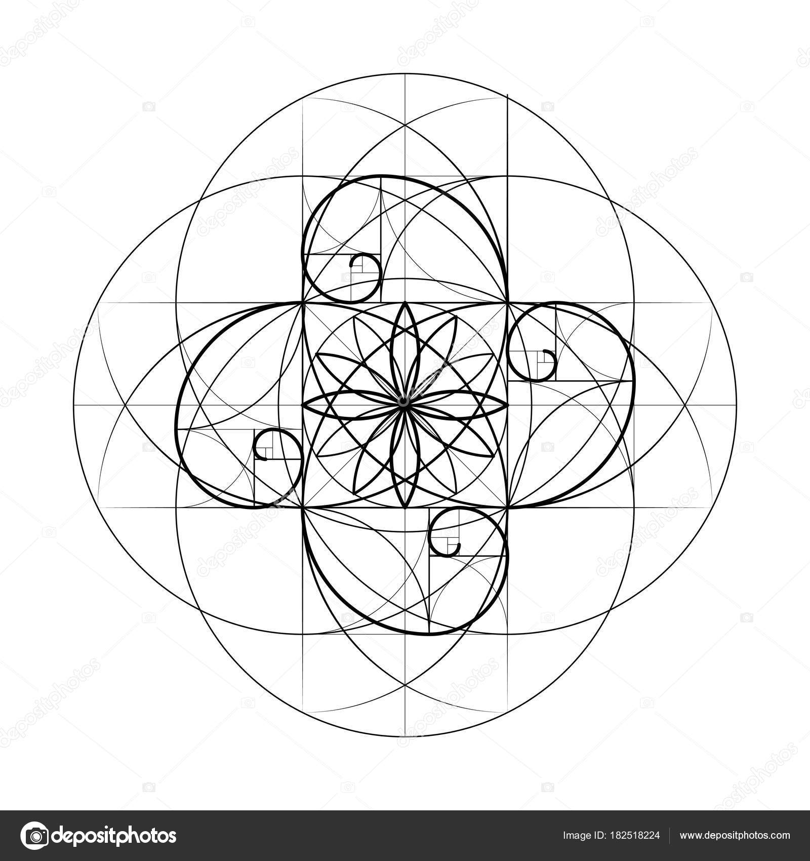 Golden Section  Sacred Geometry  Vector symbol at the intersection
