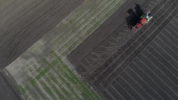 The tractor sows grain in the field.