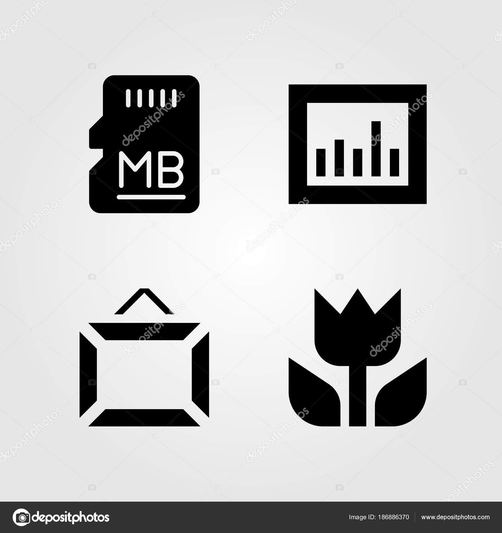 Conjunto de iconos multimedia. Marco, macro, memoria y tarjeta sd de ...