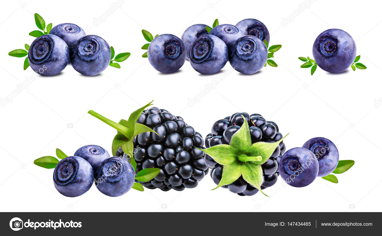 brombeeren heidelbeeren blaubeeren isoliert auf weiss. Black Bedroom Furniture Sets. Home Design Ideas