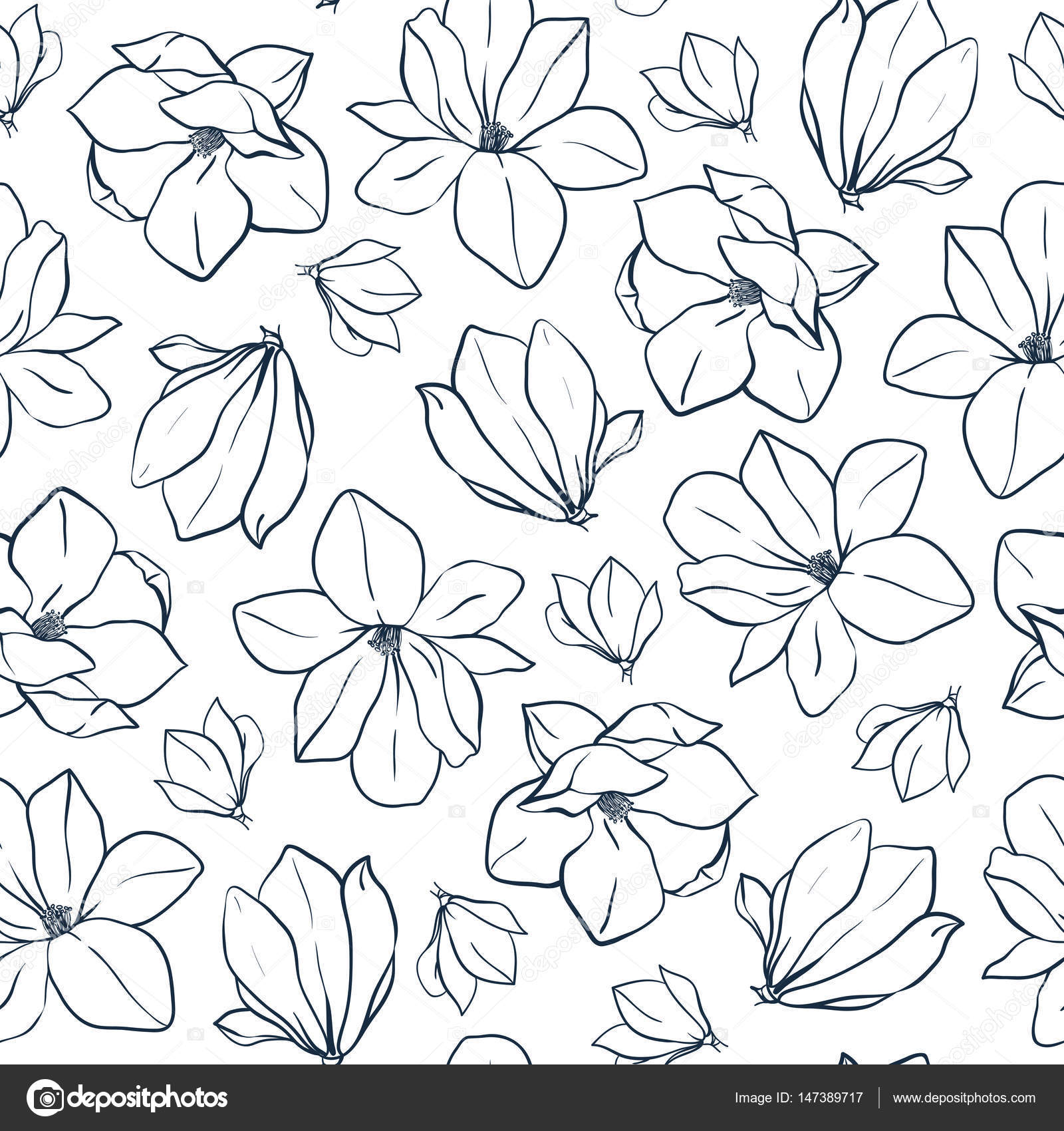 Graphic Magnolia Flowers And Buds Vector Spring Seamless Pattern Coloring Book Page Design For