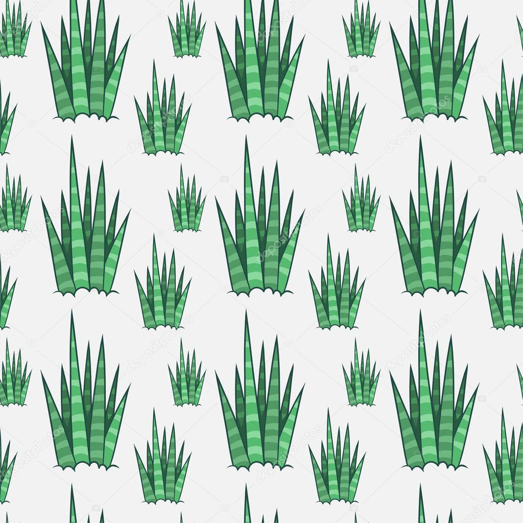 Succulents. Cactus seamless pattern