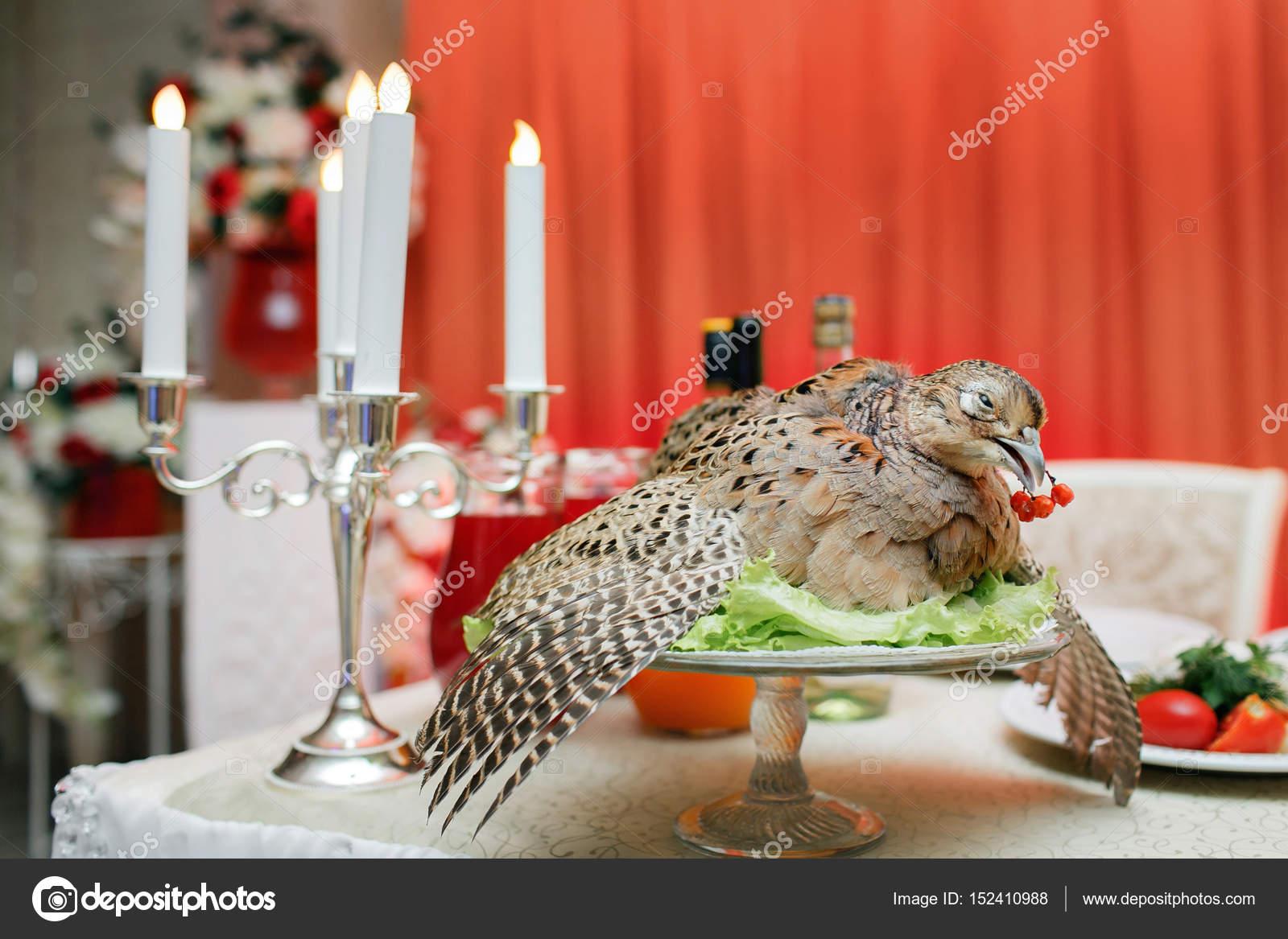 un caza de faisán herido. chef cocido para el banquete. Fiesta ...