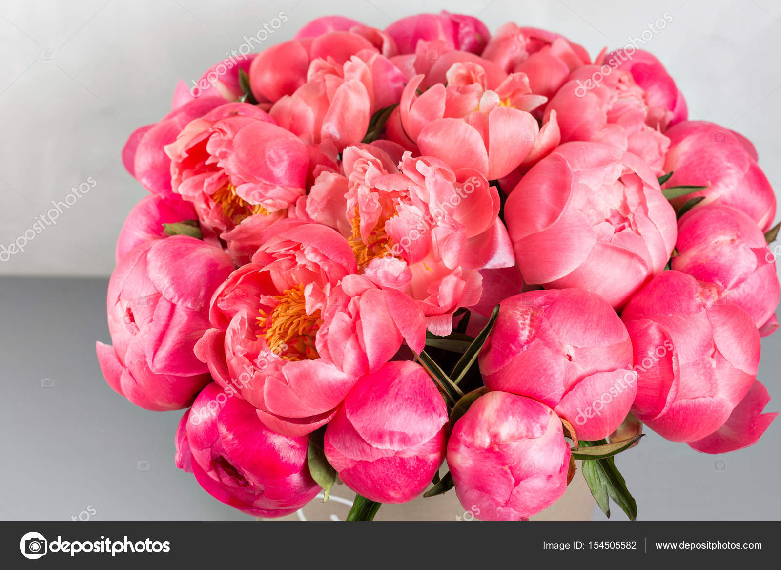 Peonies Grade Coral Sharm Beautiful Mix Coral And Pink Flower