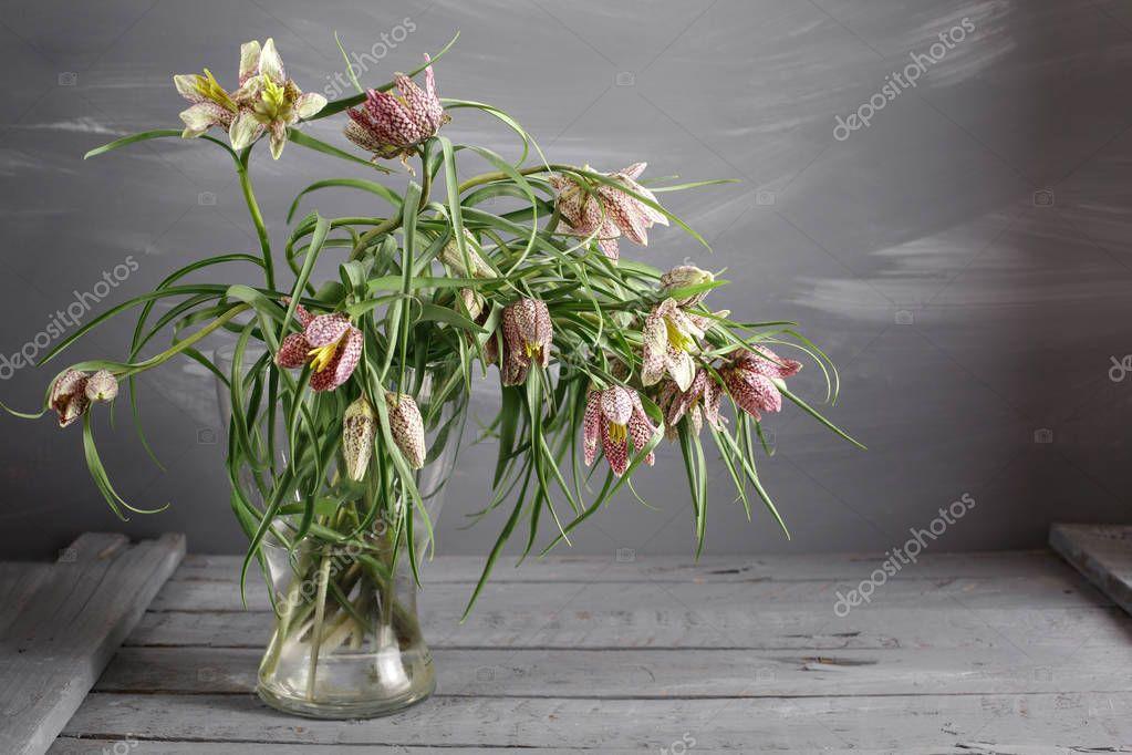 Fritillaria in vase on the worn gray surface.