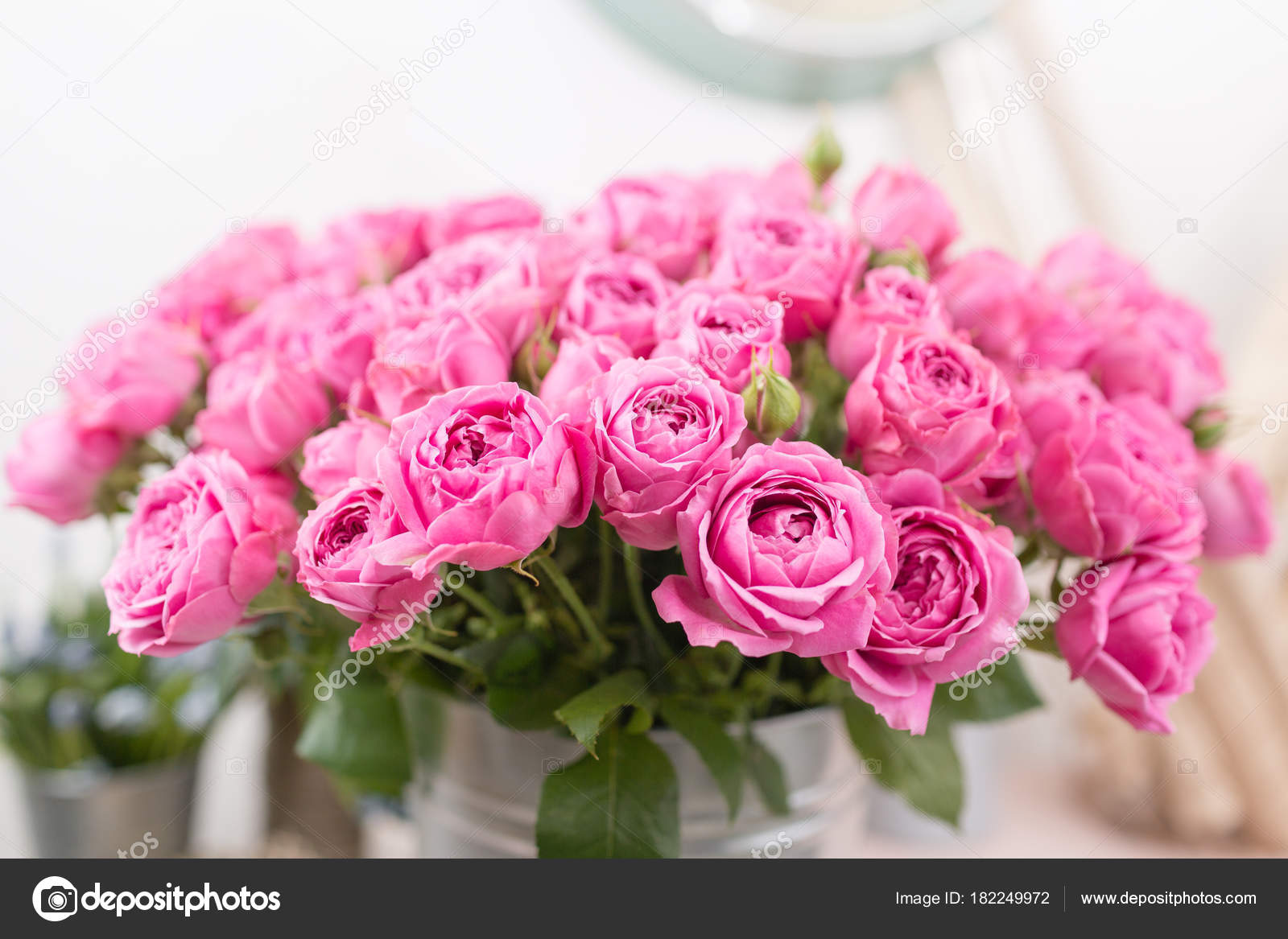 Rose Misty Bubbles. Bouquet flowers of pink roses in metal vase ...