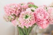 Ranuncolo persiano. pizzo con molti petali. Mazzo del ranuncolo rosa pallido fiori sfondo chiaro. Carta da parati