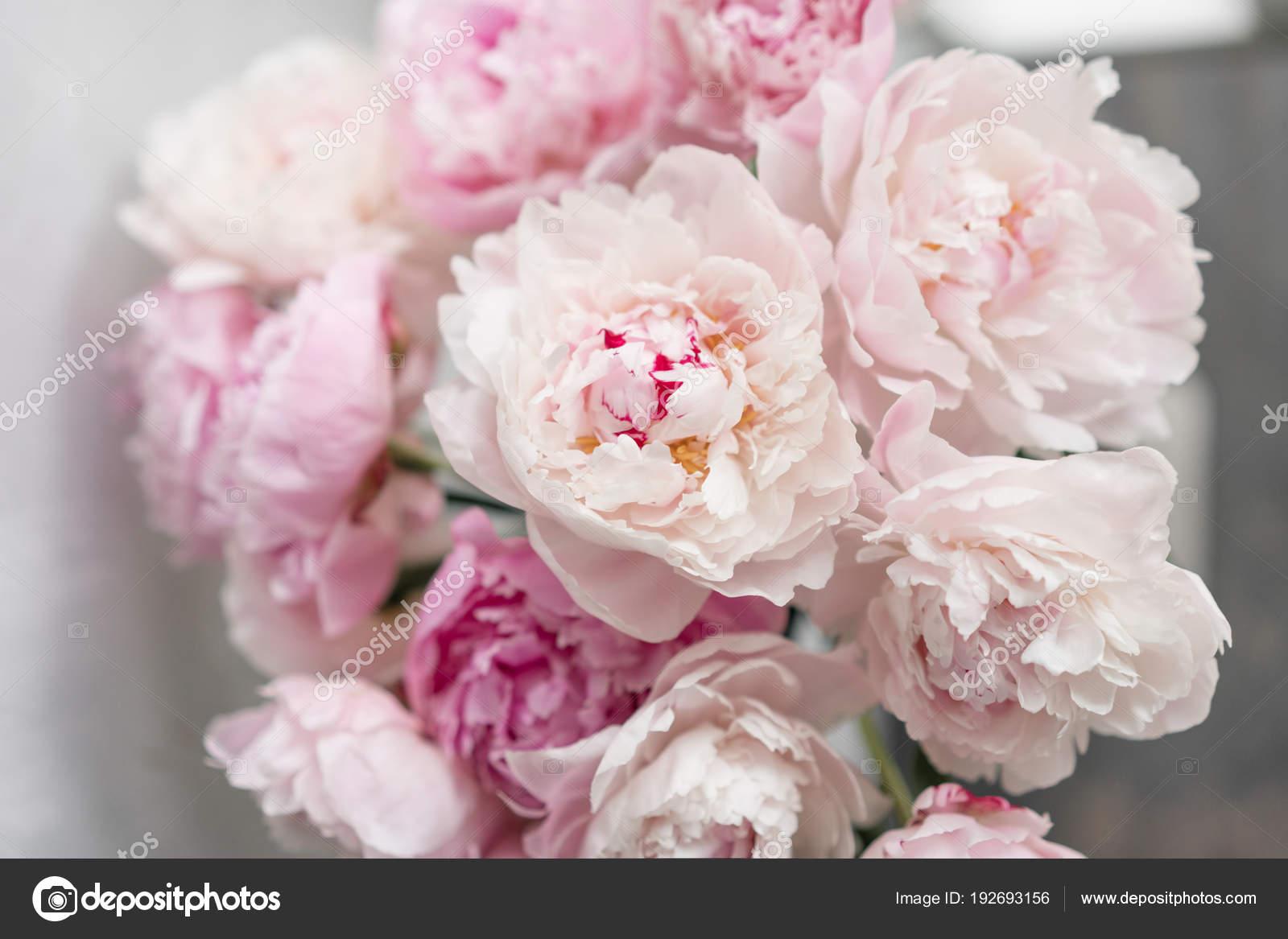 Pivoine Mignon Et Adorable Plusieurs Couches De Petales Bouquet De