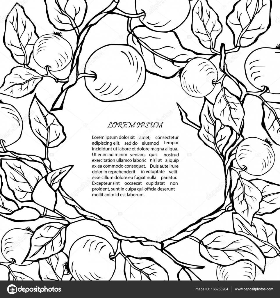 Vorlage mit Hand gezeichnet Apfel-Filialen — Stockvektor ...