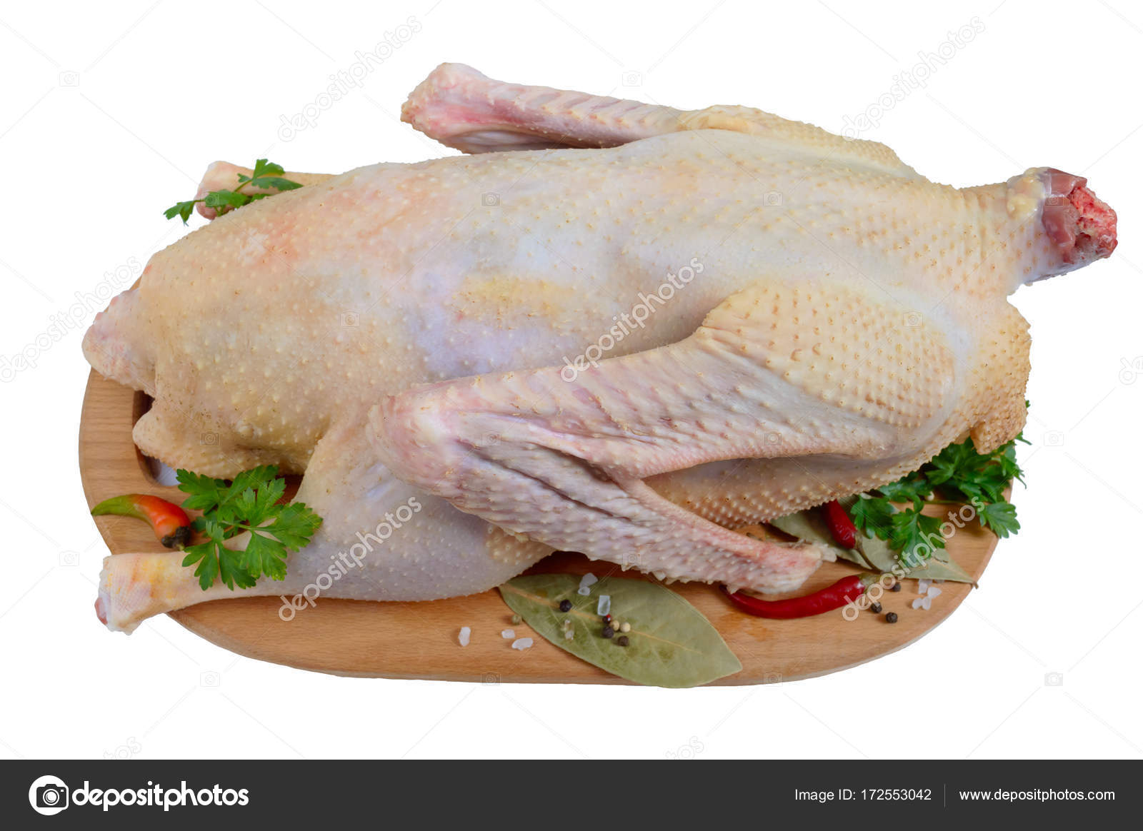 A raw goose ready to cook on a cutting board isolated on a white a raw goose ready to cook on a cutting board isolated on a white background christmas menu photo by iaroshenkorinaail forumfinder Choice Image