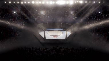 Empty mma arena side view under lights. complete tribune. 3D rendering
