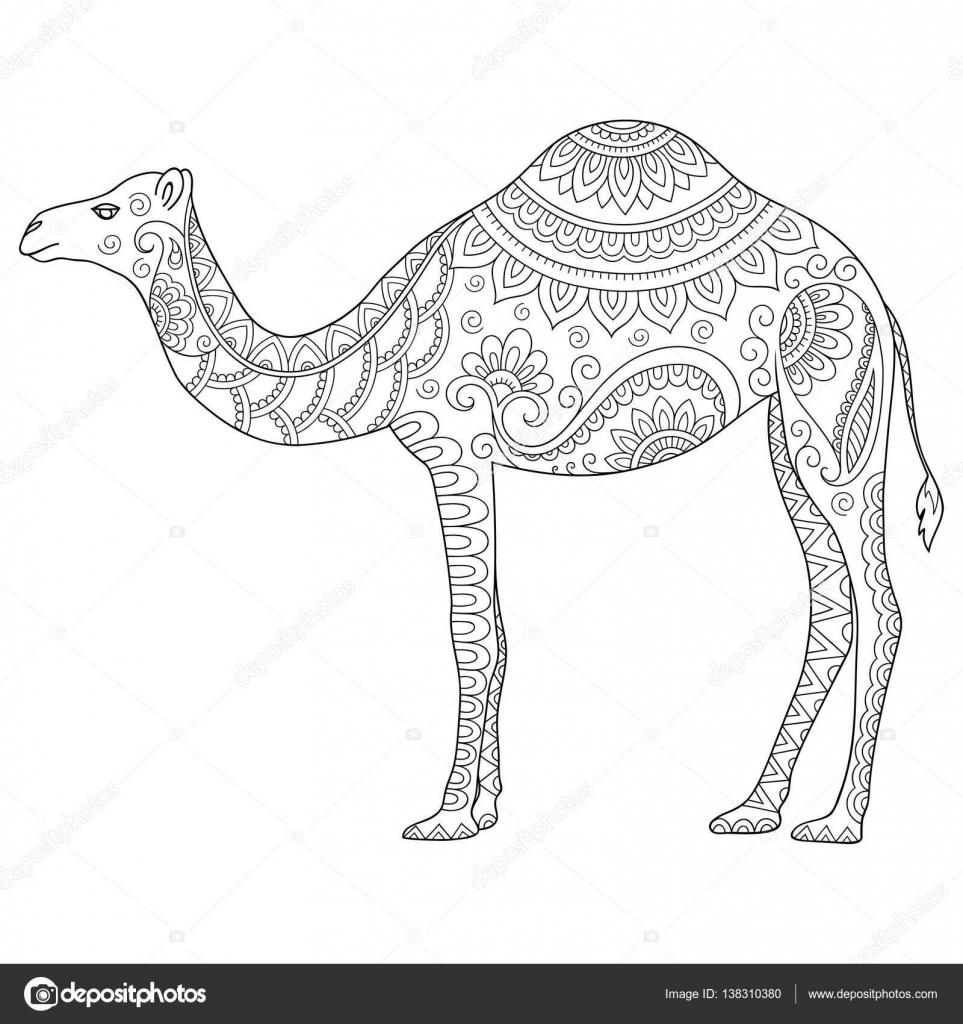 Stilize Deve Doodle Kitabı Poster Yazdır Veya Dövme Renklendirme