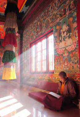 Young monk sitting and reading