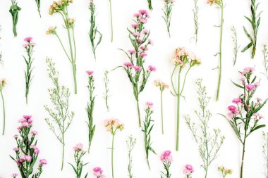 Floral pattern with pink and beige wildflowers, green leaves, branches on white background. Flat lay, top view. Valentine's background stock vector