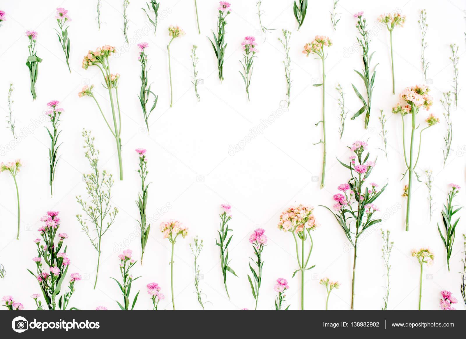 Marco Con Coloridas Flores Silvestres, Verdes Hojas, Ramas