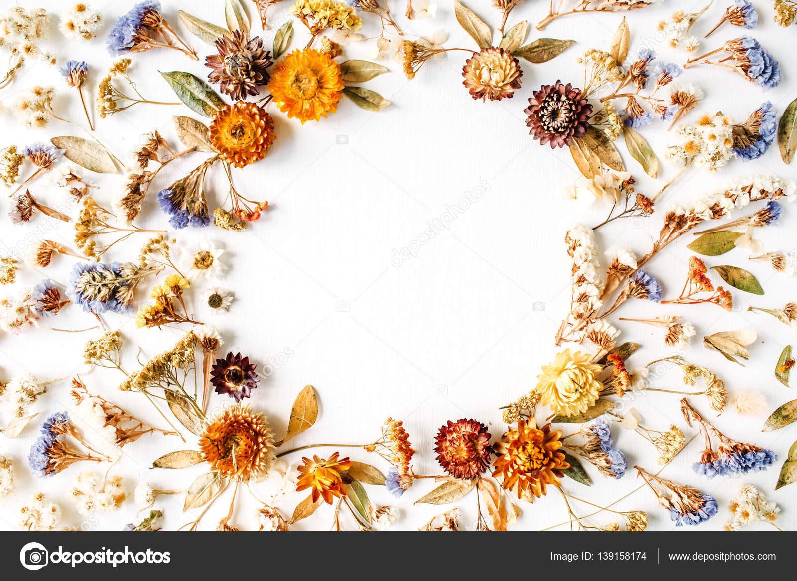 quadro feito de ptalas ramos folhas e flores secas amarelas u fotografia de stock