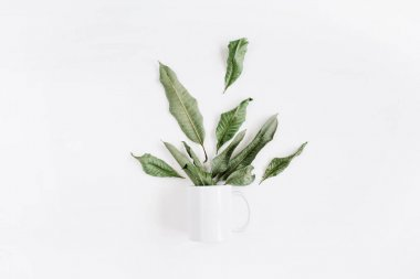 Blank template of white mug and green leaves
