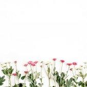 Vörös és fehér vadvirágok