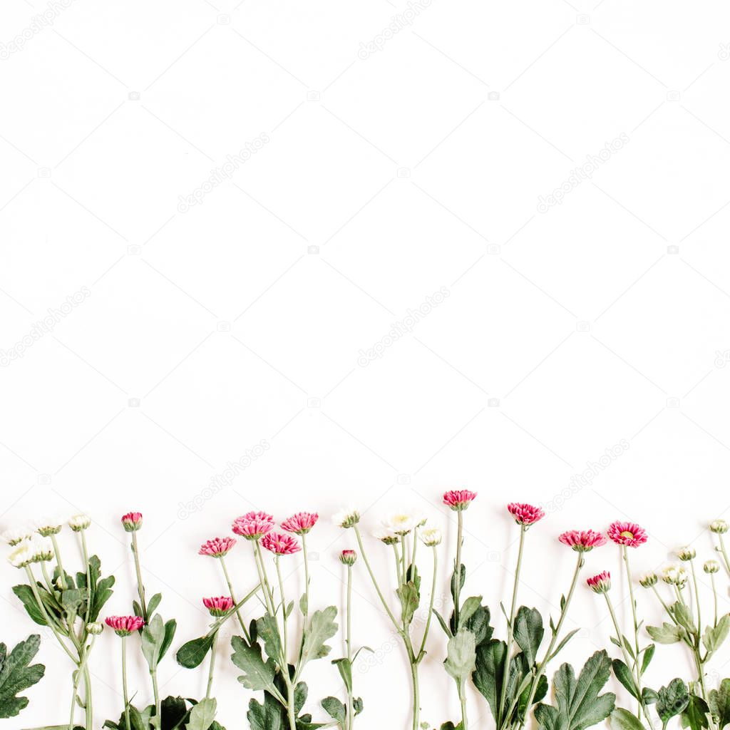Red and white wildflowers