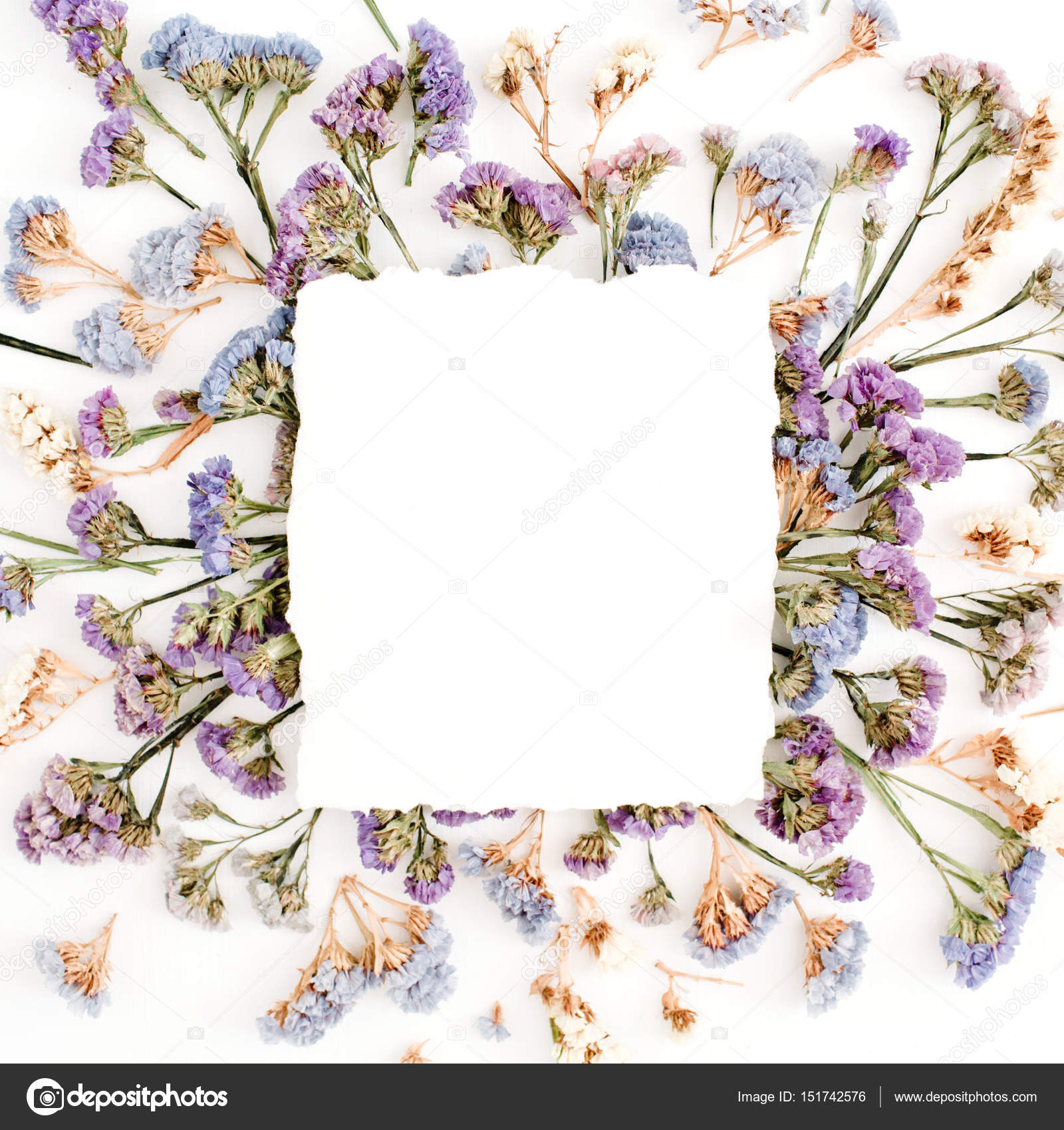 Empty White Paper Blank On Blue And Purple Dried Flowers Frame