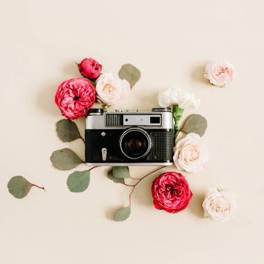 Vintage retro camera, red and beige rose flower buds