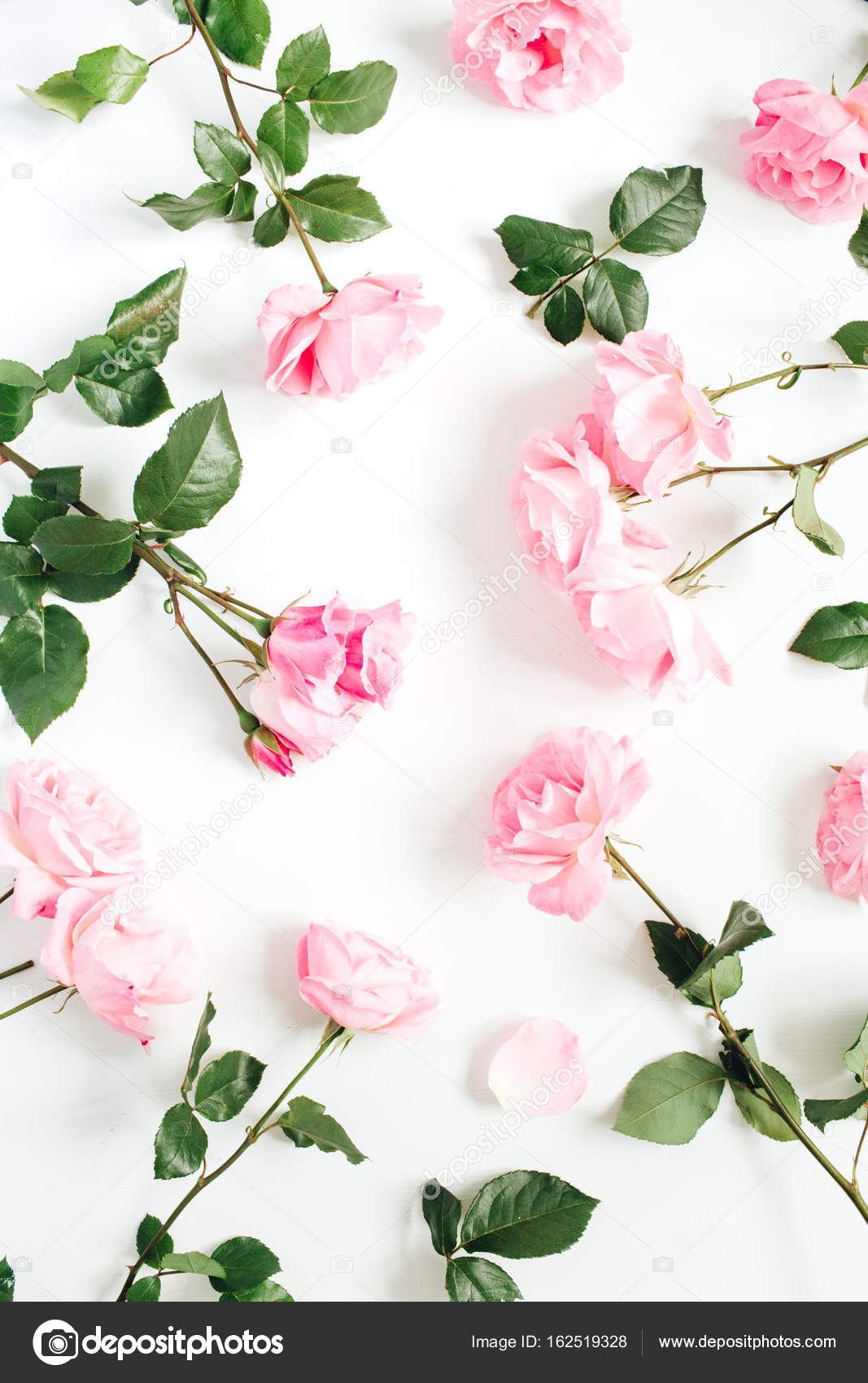 Floral Pattern Made Of Pink Roses Green Leaves Stock Photo