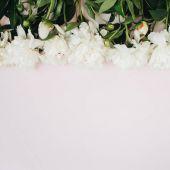 Fényképek mintával készült fehér bazsarózsa virágok